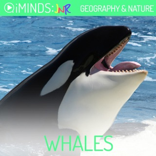 Whales: Geography & Nature (Unabridged) E-Book Download