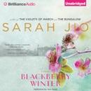 Blackberry Winter: A Novel (Unabridged) MP3 Audiobook