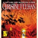 The Awakening (Unabridged) MP3 Audiobook