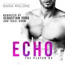 Echo: The Player, Book 3 (Unabridged) MP3 Audiobook