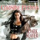 Dark Slayer: Dark Series, Book 20 (Unabridged) MP3 Audiobook