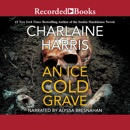 Ice Cold Grave MP3 Audiobook
