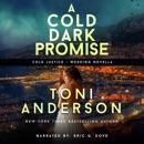A Cold Dark Promise: FBI Romantic Suspense MP3 Audiobook