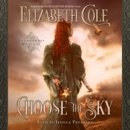 Choose the Sky: A Medieval Romance: Swordcross Knights, Book 2 (Unabridged) MP3 Audiobook