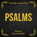 The Holy Bible - Psalms (King James Version) MP3 Audiobook