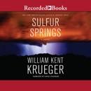 Sulfur Springs MP3 Audiobook