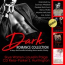 Dark Romance Collection: A Sexy, Dark Bundle (Unabridged) MP3 Audiobook