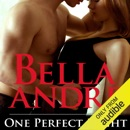 One Perfect Night: Seattle Sullivans, Book 0.5 (Unabridged) MP3 Audiobook