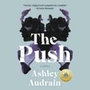 The Push: A Novel (Unabridged) MP3 Audiobook