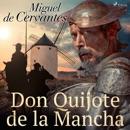 Don Quijote de la Mancha MP3 Audiobook