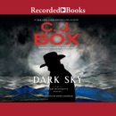 Dark Sky audiobook summary, reviews and download