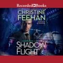 Shadow Flight: A Shadow Rider Novel MP3 Audiobook