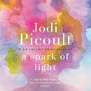 A Spark of Light: A Novel (Unabridged) MP3 Audiobook