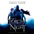 A Torch Against the Night (Unabridged) MP3 Audiobook