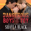 Dangerous Boys and their Toy MP3 Audiobook