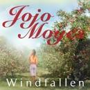 Windfallen MP3 Audiobook