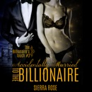 The Billionaire's Touch: Accidentally Married to the Billionaire, Part 3 (Unabridged) MP3 Audiobook
