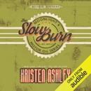 The Slow Burn (Unabridged) MP3 Audiobook