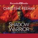 Shadow Warrior MP3 Audiobook