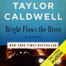 Bright Flows the River: A Novel (Unabridged) MP3 Audiobook