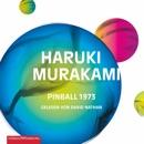 Pinball 1973 MP3 Audiobook