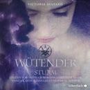 Wütender Sturm MP3 Audiobook