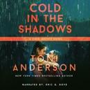 Cold In The Shadows: FBI Romantic Suspense MP3 Audiobook