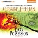 Dark Possession: Dark Series, Book 18 (Unabridged) MP3 Audiobook