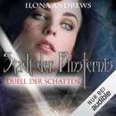 Duell der Schatten: Stadt der Finsternis 3 MP3 Audiobook