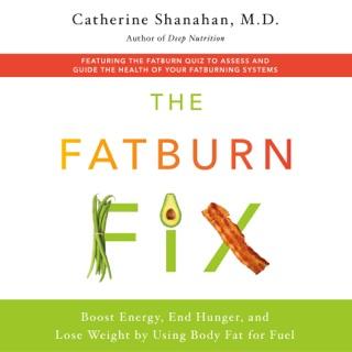 The Fatburn Fix MP3 Download