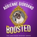 Boosted: A Cozy Couture Romantic Crime Comedy (A Lucie Rizzo Mystery, Book 4) (Unabridged) MP3 Audiobook