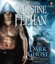 Dark Ghost (Unabridged) MP3 Audiobook