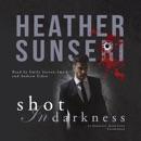 Shot in Darkness MP3 Audiobook