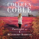 Twilight at Blueberry Barrens MP3 Audiobook