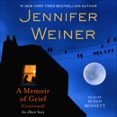 A Memoir of Grief (Continued) (Unabridged) MP3 Audiobook