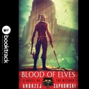 Blood of Elves MP3 Audiobook