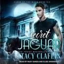 Secret Jaguar MP3 Audiobook