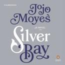 Silver Bay: A Novel (Unabridged) MP3 Audiobook