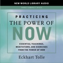 Download Practicing the Power of Now MP3