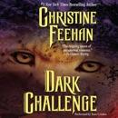 Dark Challenge MP3 Audiobook
