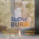 Slow Burn: Iron Horse Series, Book 2 (Unabridged) MP3 Audiobook