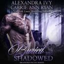 Buried and Shadowed: Branded Packs, Book 3 (Unabridged) MP3 Audiobook