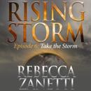 Take the Storm (Unabridged) MP3 Audiobook