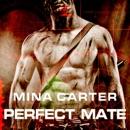 Perfect Mate (Unabridged) MP3 Audiobook