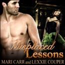 Misplaced Lessons (Unabridged) MP3 Audiobook