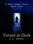 Turned at Dark book summary, reviews and download