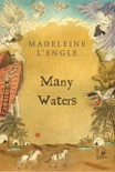 Many Waters e-book