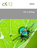 CK-12 Biology book summary, reviews and download