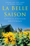 La Belle Saison book summary, reviews and downlod
