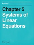 Systems of Linear Equations book summary, reviews and download